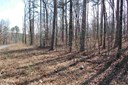 Lots and Land - Drasco, AR (photo 1)