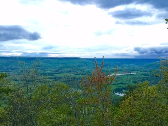 Lots and Land - Cloudland, GA (photo 5)