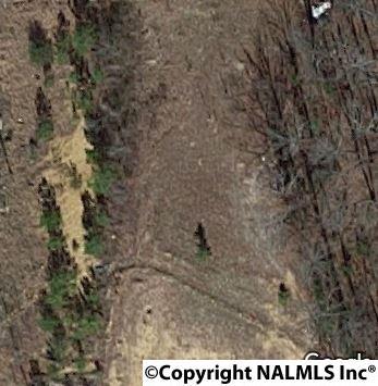 Lots and Land - PINSON, AL (photo 1)