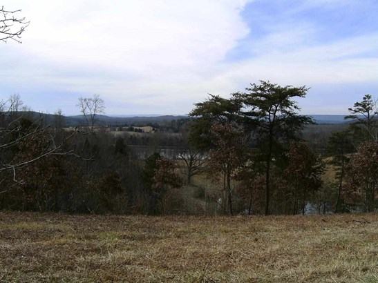 Lots and Land - Decatur, TN (photo 3)
