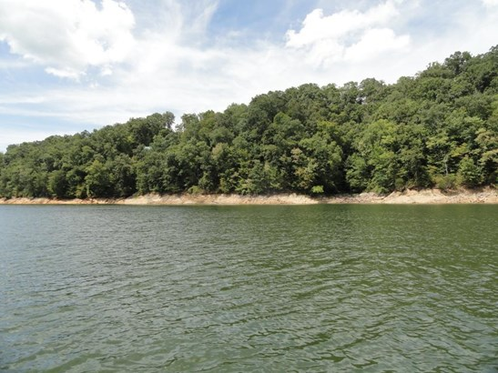 Lots and Land - New Tazewell, TN (photo 2)