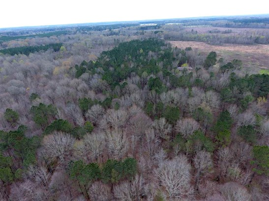 Lots and Land - Pelahatchie, MS (photo 4)