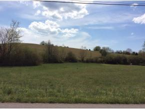 Lots and Land - Midway, TN (photo 4)
