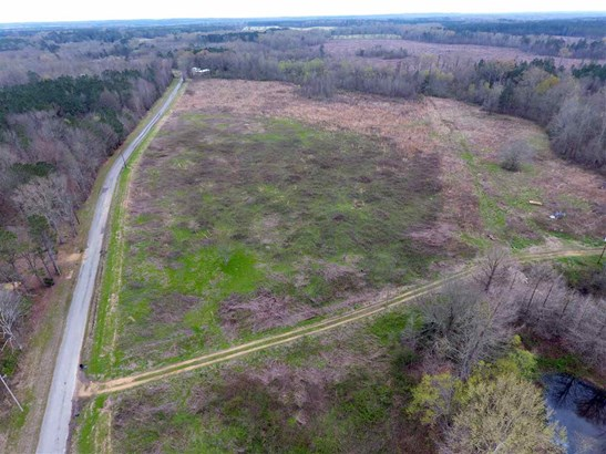 Lots and Land - Pelahatchie, MS (photo 3)