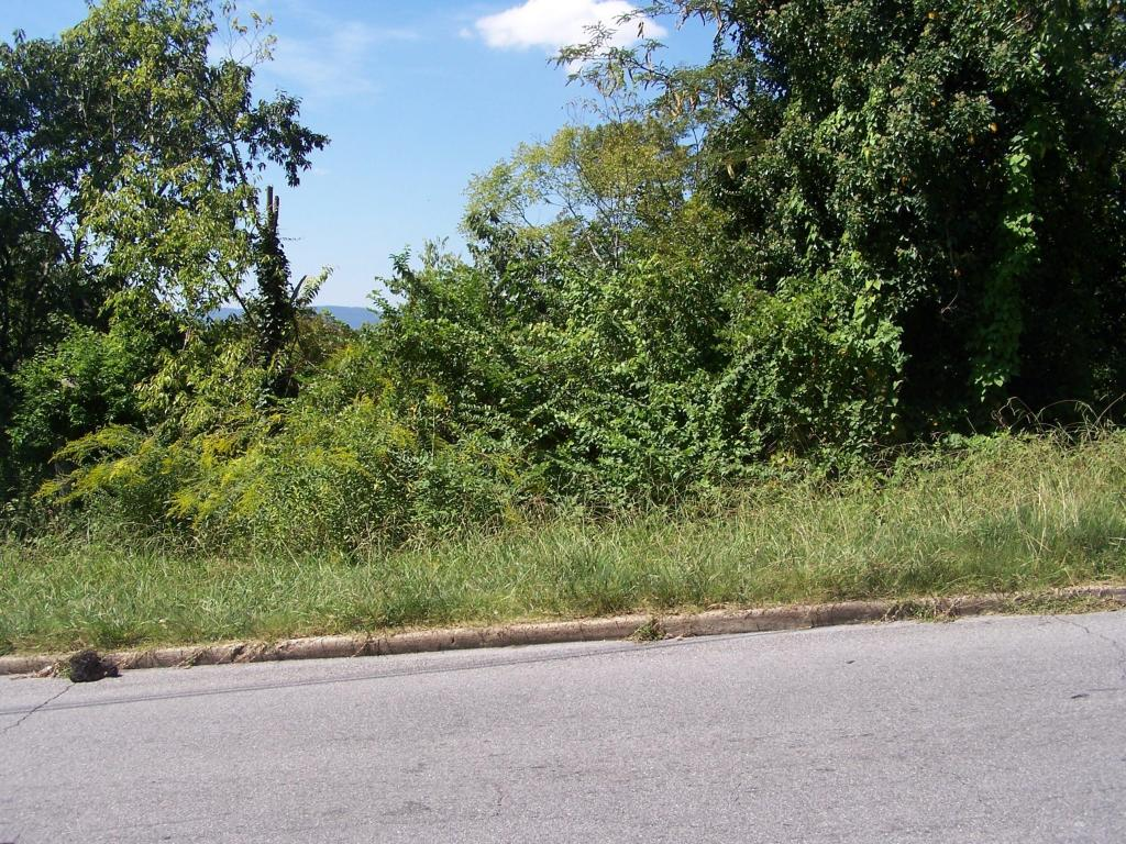 Lots and Land - Chattanooga, TN (photo 3)