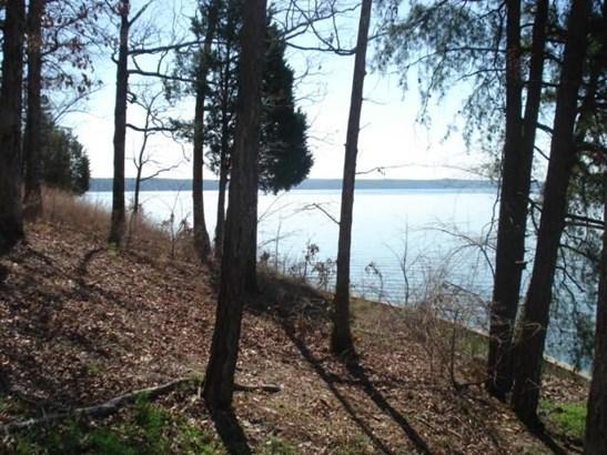 Lots and Land - Savannah, TN (photo 2)