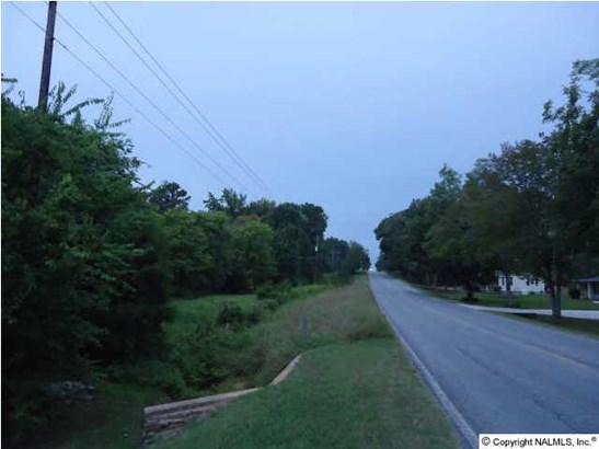 Lots and Land - VALHERMOSO SPRINGS, AL (photo 2)
