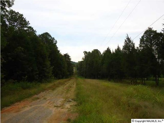 Lots and Land - VALHERMOSO SPRINGS, AL (photo 4)