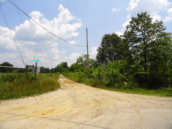 Lots and Land - QUEBECK, TN (photo 2)