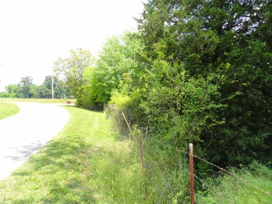 Lots and Land - QUEBECK, TN (photo 4)