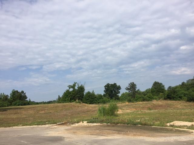 Lots and Land - Saltillo, MS (photo 1)