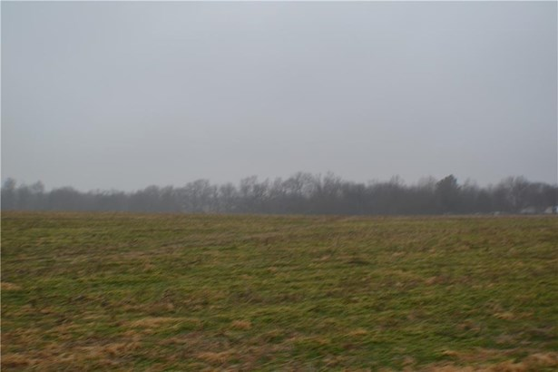 Lots and Land - Gentry, AR (photo 4)