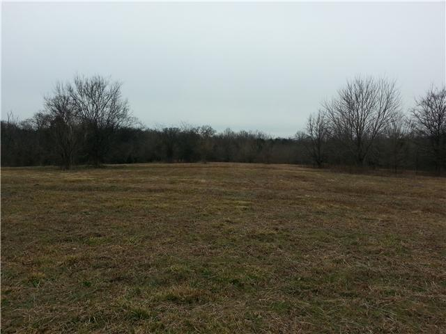Lots and Land - Franklin, TN (photo 3)