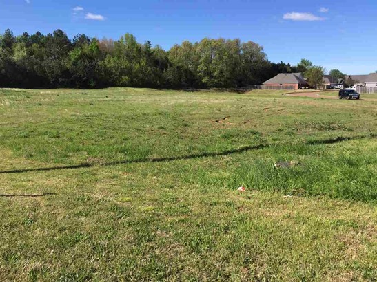Lots and Land - Lakeland, TN (photo 1)