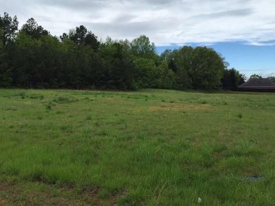 Lots and Land - Lakeland, TN (photo 4)