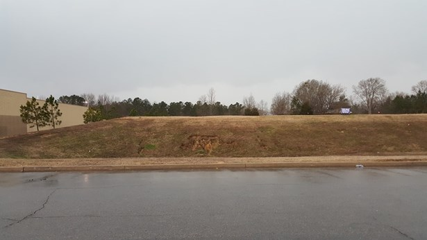 Lots and Land - Booneville, MS (photo 1)