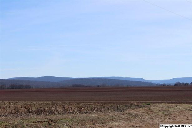 Lots and Land - NEW MARKET, AL (photo 1)