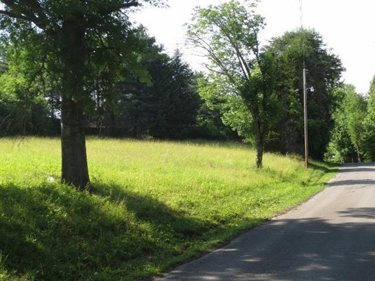 Lots and Land - Ten Mile, TN (photo 2)