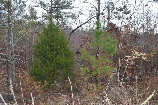 Lots and Land - Benton, AR (photo 4)