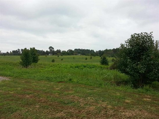 Lots and Land - ATHENS, AL (photo 2)