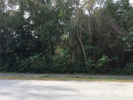 249 Angeles , Debary, FL - USA (photo 2)