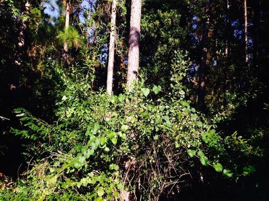 0000 Cypress Lakes , Jacksonville, FL - USA (photo 1)