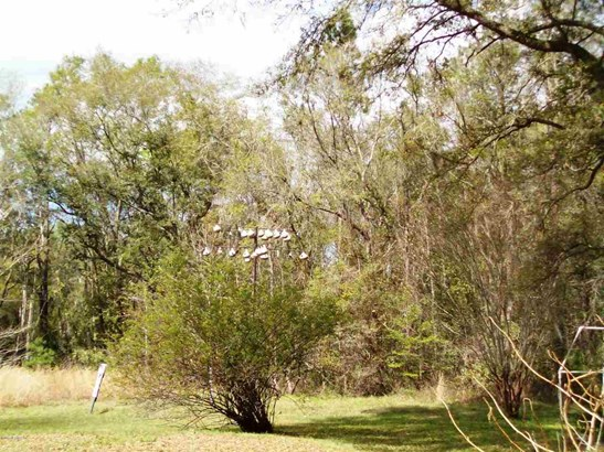 17016 72nd , Hawthorne, FL - USA (photo 5)