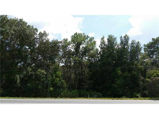 0 County Road 48 , Yalaha, FL - USA (photo 2)