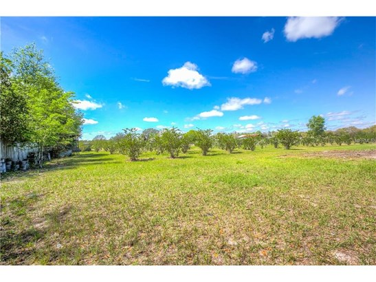 36815 Leslye , Eustis, FL - USA (photo 3)