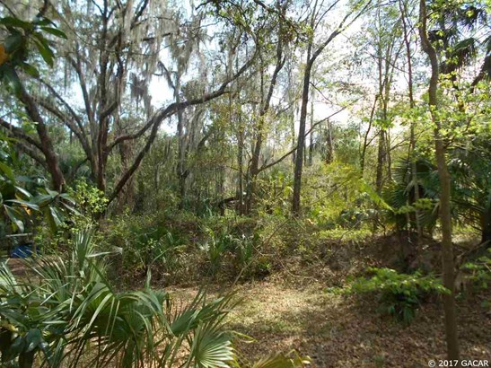 00 Wacahoota , Micanopy, FL - USA (photo 5)