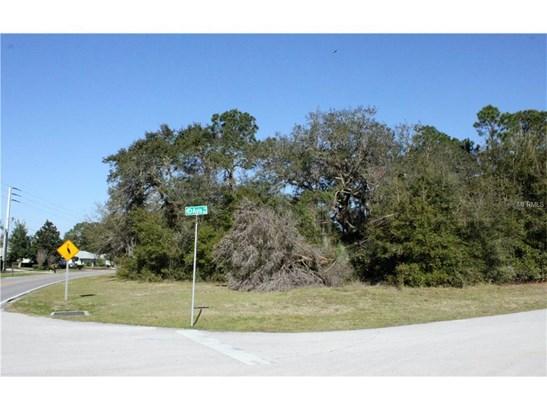 980 Avis , Deltona, FL - USA (photo 4)