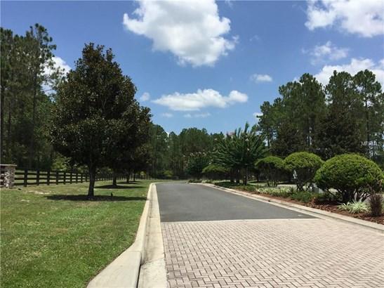 24238 Deep Springs , Eustis, FL - USA (photo 3)