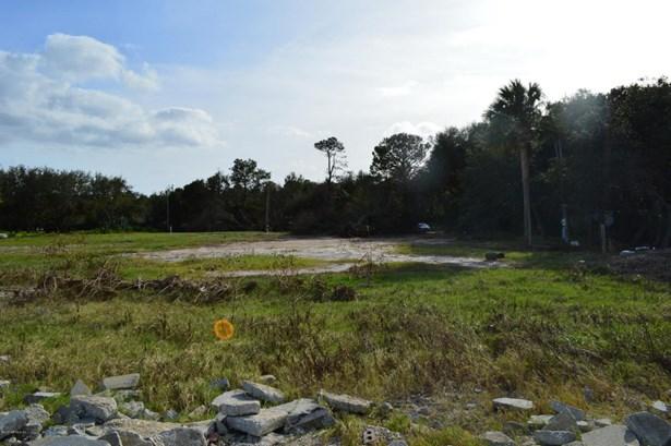 16141 Shellcracker , Jacksonville, FL - USA (photo 4)