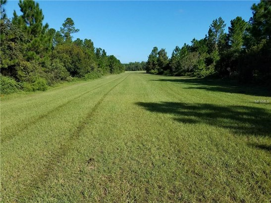31614 Bottany Woods A A, Eustis, FL - USA (photo 4)