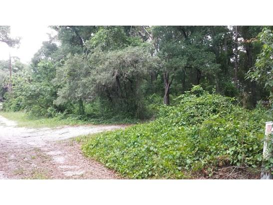 0 Terrell , Mount Dora, FL - USA (photo 1)
