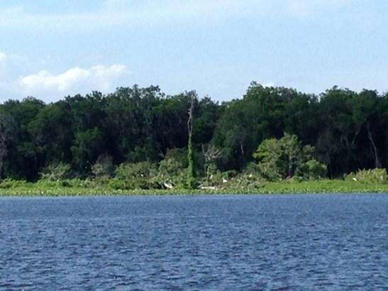 195 Sportsman Drive , Welaka, FL - USA (photo 3)