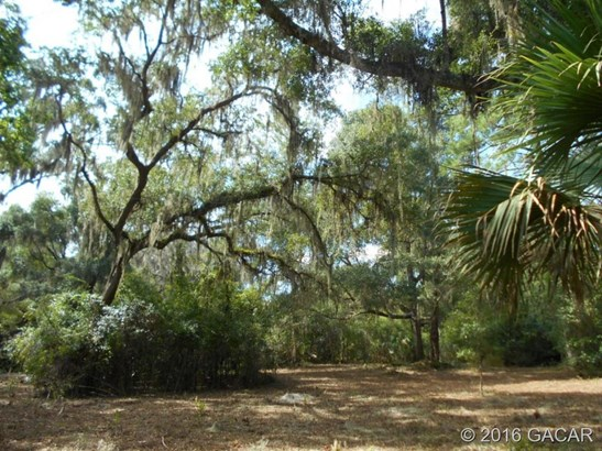 120 Evans , Micanopy, FL - USA (photo 1)