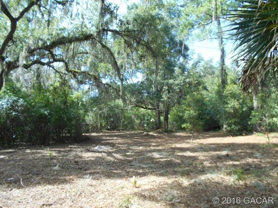 120 Evans , Micanopy, FL - USA (photo 4)