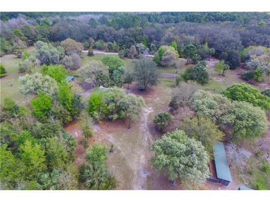 22250 Deer Park , Eustis, FL - USA (photo 5)