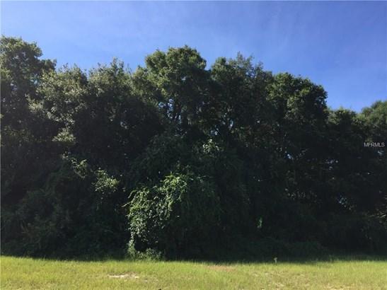 0 Eldorado , Eustis, FL - USA (photo 5)