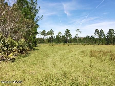 2150 Spruce Creek , Port Orange, FL - USA (photo 1)