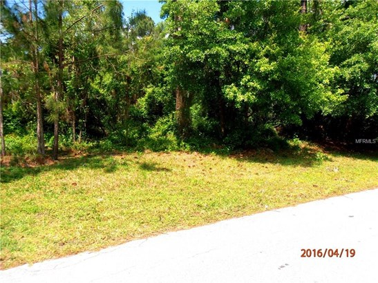 13 Erma , Debary, FL - USA (photo 3)