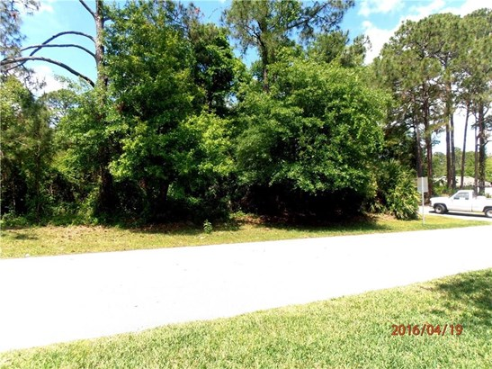 13 Erma , Debary, FL - USA (photo 4)