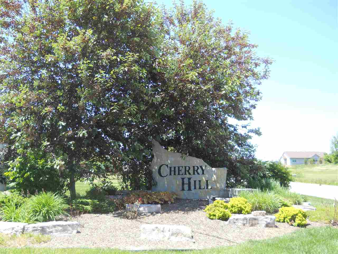 Land - CHERRY VALLEY, IL (photo 1)