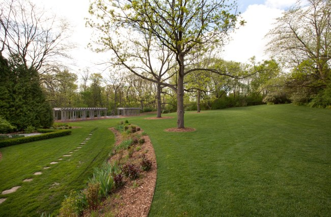 Lawn Area Summer View (photo 5)