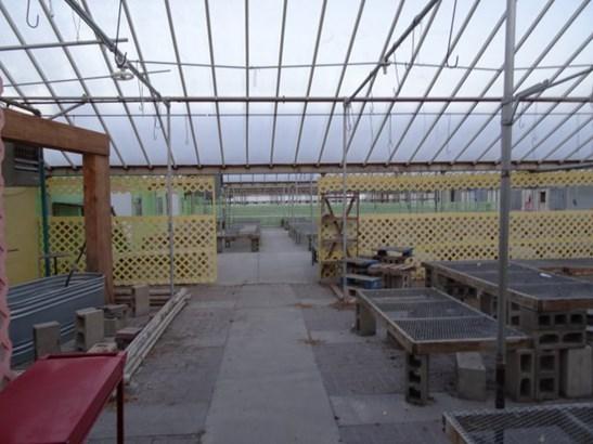 Greenhouse (photo 4)