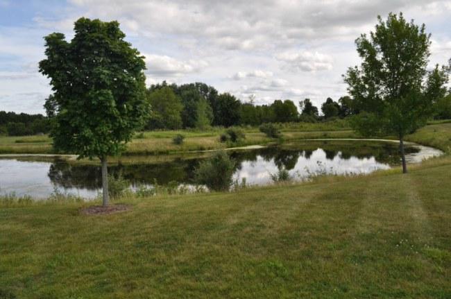 Lot Overlooks Pond (photo 2)
