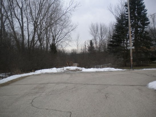 Road Access off Suzanne (photo 3)