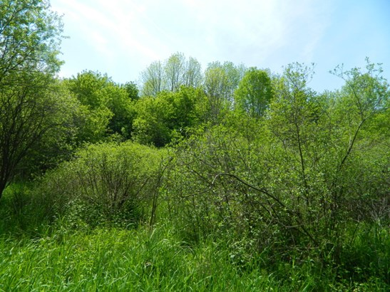 Build-able 36.78 acre lot (photo 1)