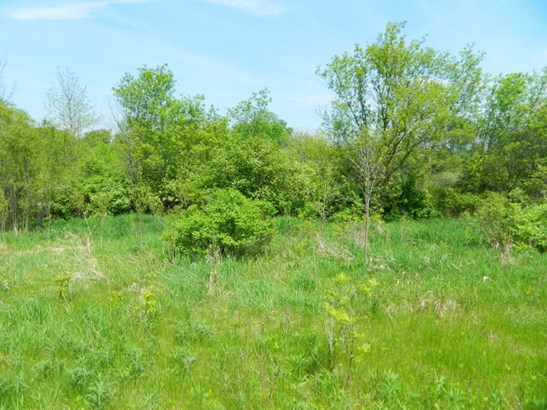 Build-able 36.78 acre lot (photo 3)